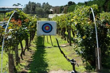 2016 03 29 Winery - Wild on Waiheke-108