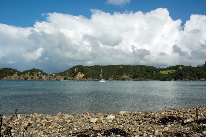 2016 04 03 Sail Day 5 Whangamumu Harbour-101