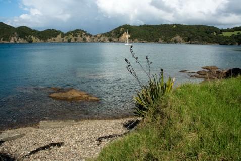 2016 04 03 Sail Day 5 Whangamumu Harbour-103