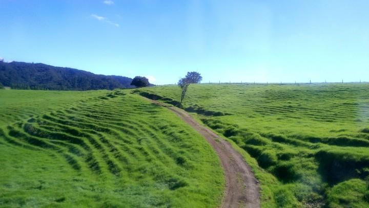 bus ride hill ridges