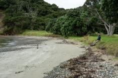 2016 04 11 Sail Day 13 Moturua Island Hike-117