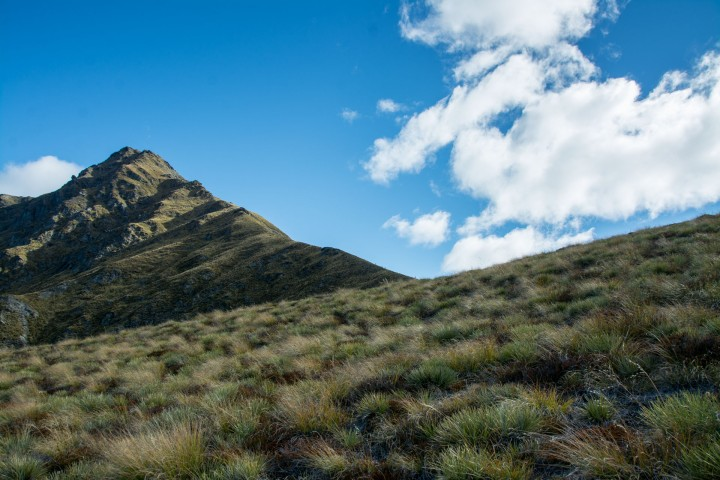 2016 04 14 Ben Lomond Saddle Hike-182