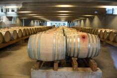 2016 04 17 Peregrine Winery-107