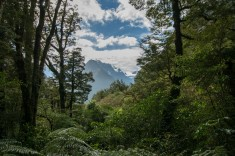 2016 04 19 Drive to Milford Sound (112)
