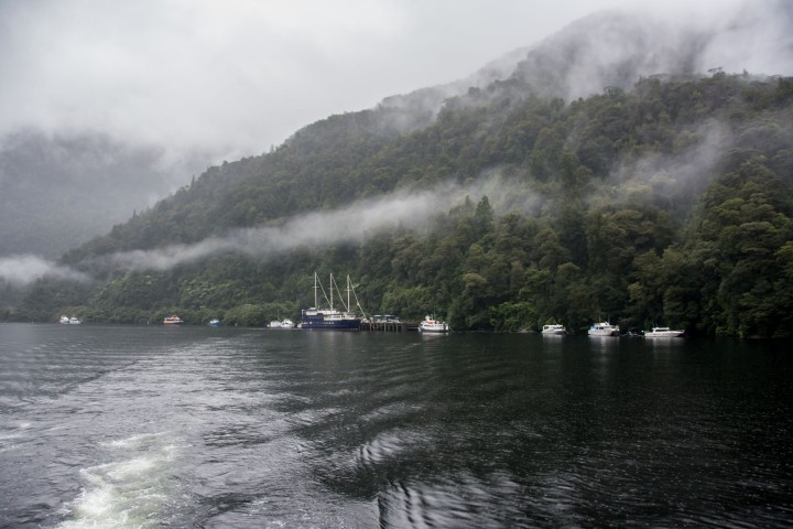 2016 04 20 Doubtful Sound Cruise (102)