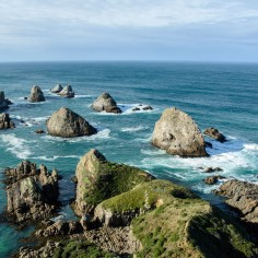 2016 04 24 Nugget Point (166)