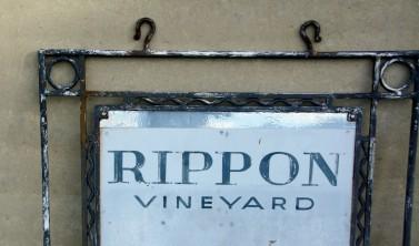 2016 04 27 Rippon Winery Wanaka (126)