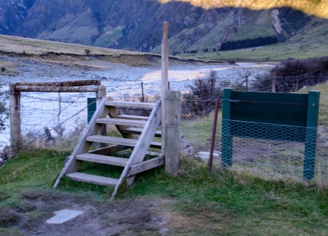 2016 04 28 Sheep and Cows Mt Aspiring Park (115)