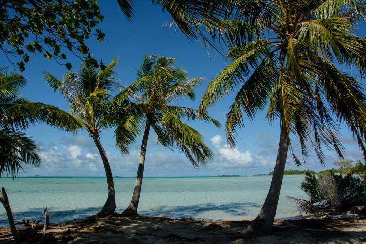 2016 05 15 FP Cruise - Fakarava Blue Lagoon (221)