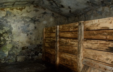 puffins-and-root-cellars-5-of-32