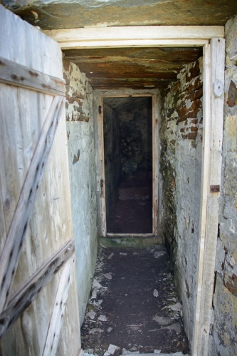 puffins-and-root-cellars-6-of-32
