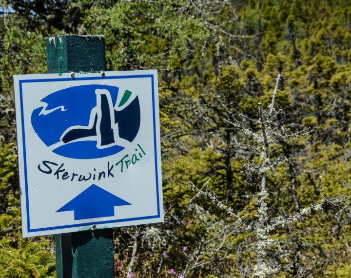skerwink-trail-13-of-31