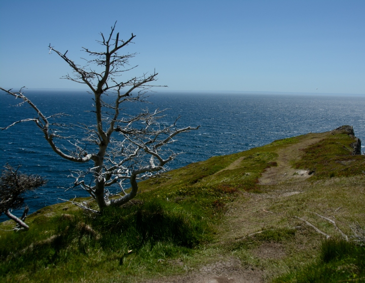 skerwink-trail-27-of-31