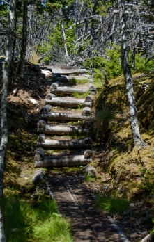 skerwink-trail-9-of-31