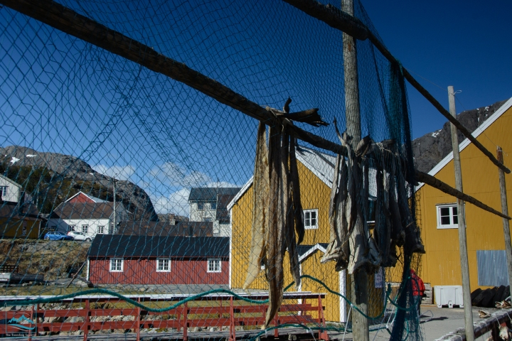 Norway 2017 Nusfjord fishing village-198
